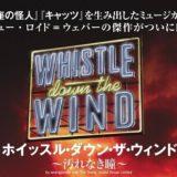 『ホイッスル・ダウン・ザ・ウィンド・汚れなき瞳』のあらすじ【2020年ミュージカル】